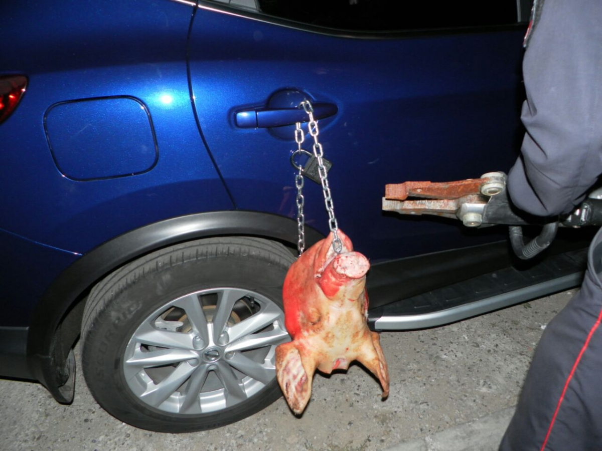 В Садовом к припаркованной на тротуаре машине повесили на цепь свиную голову